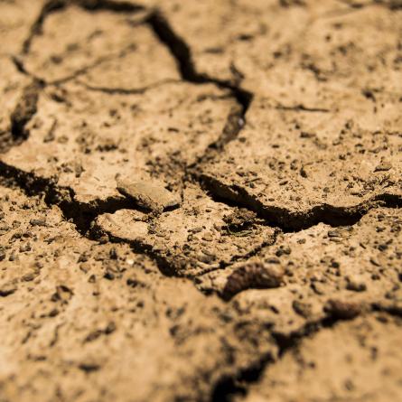 desertificacao